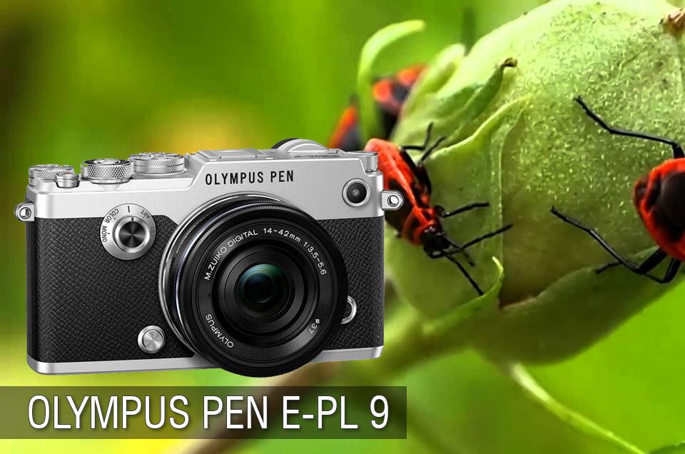 Olympus PEN E-PL 9 Review